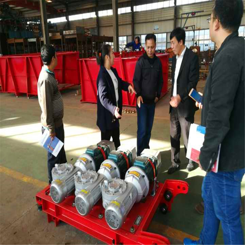 Twin cage Building Hoist/construction passenger elevator/construction hoist with factory price in China