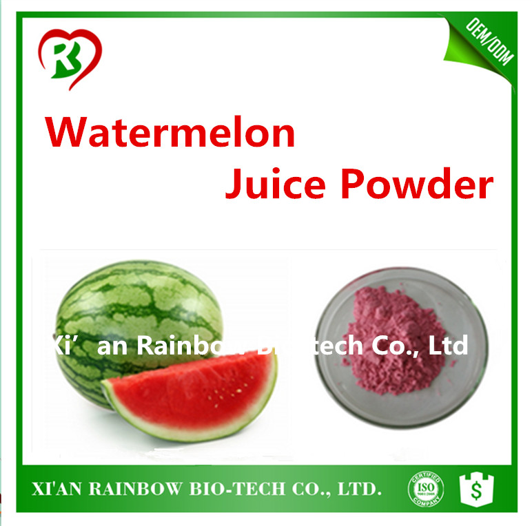 Hot selling Spray Dried watermelon fruit juice concentrate powder iso gmp approved natural watermelon extract powder