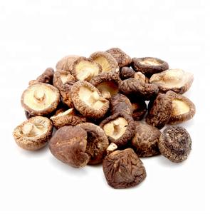 Best price Air dry shiitake mushroom for exporting