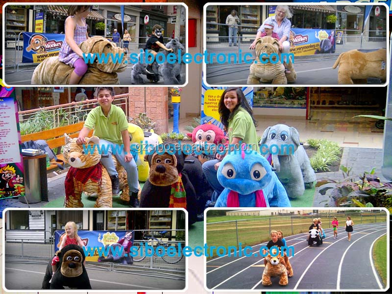 sibo animal rides in different country 2