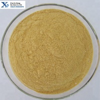 High Quality GMP Kosher Natural Instant Soy Milk Powder