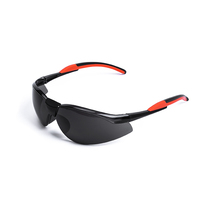 G046 Anti-fog/UV/scratch available eye protective safety glasses