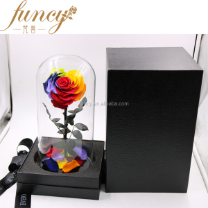 Ecuadorian Preserved 10cm Heart Shape Rainbow Color Real Roses that Last 3-5 years