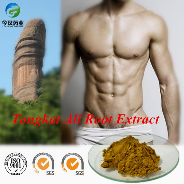 Herbs For Penis Enlargement