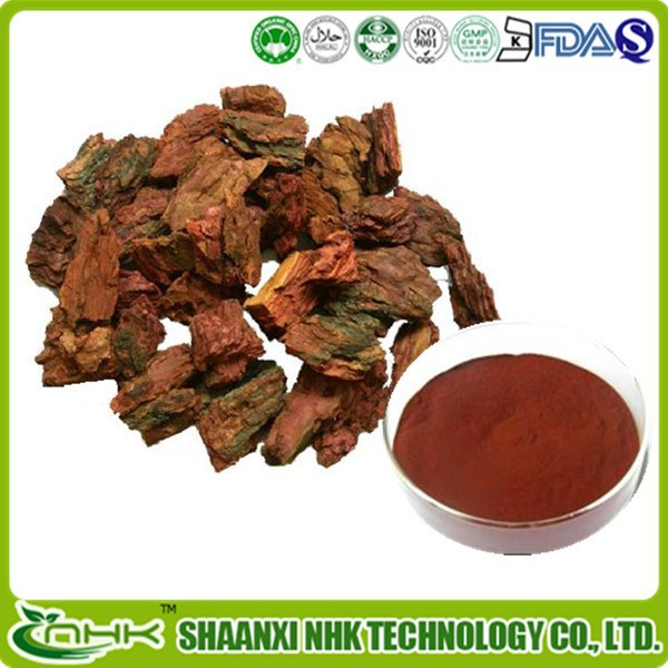 Professional supplier free sample arthritis prevention ingredient proanthocyandins high quality pine bark extract 95%