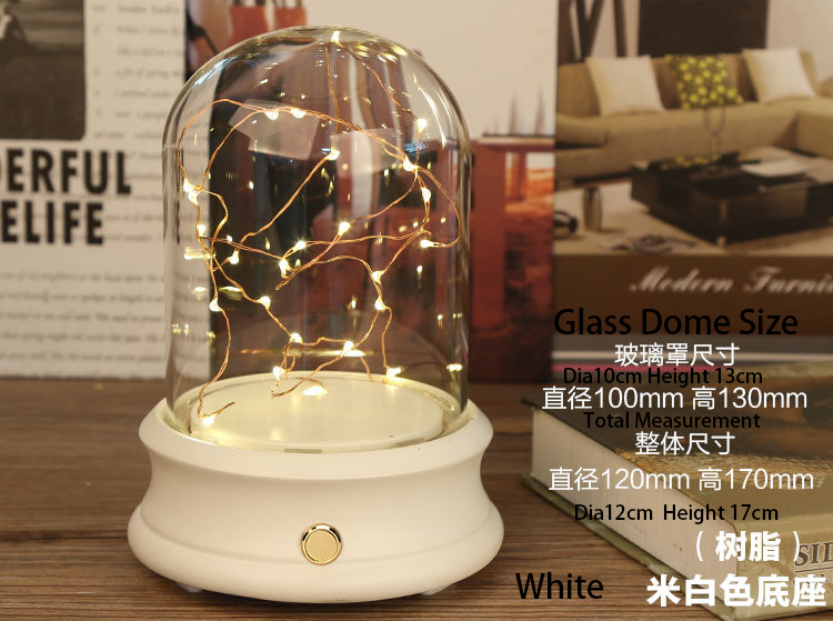 glass-dome-with-led-light.png