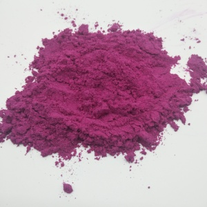 FD007P Best Quality 100% Natural Freeze Dried pitaya powder Freeze Dried Dragon Fruit Powder