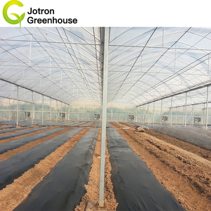 Cheap And Long Life Agriculture Greenhouse For Cultivation