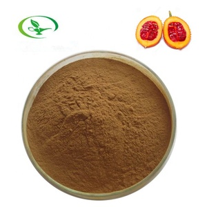 HALAL factory supply wholesale gac fruit extract powder