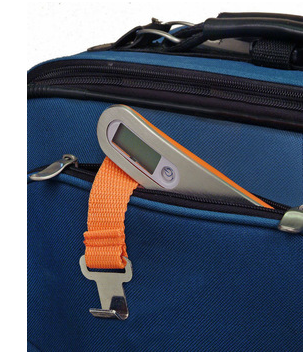 Hangzhou TS-H1301 Hotselling LCD Display ABS Model Portable Electronic Digital Precision Travel Luggage Scale