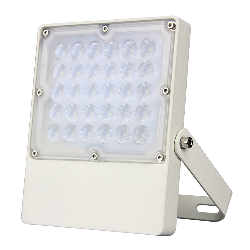 Fashion and New Stylish High Lumen Good Quality LED Outdoor Project Light 30W