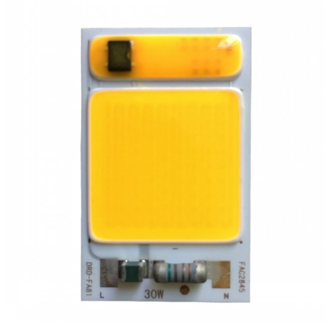 High quality waterproof china manufacturer 110v 220v led cob chip for led flood light
