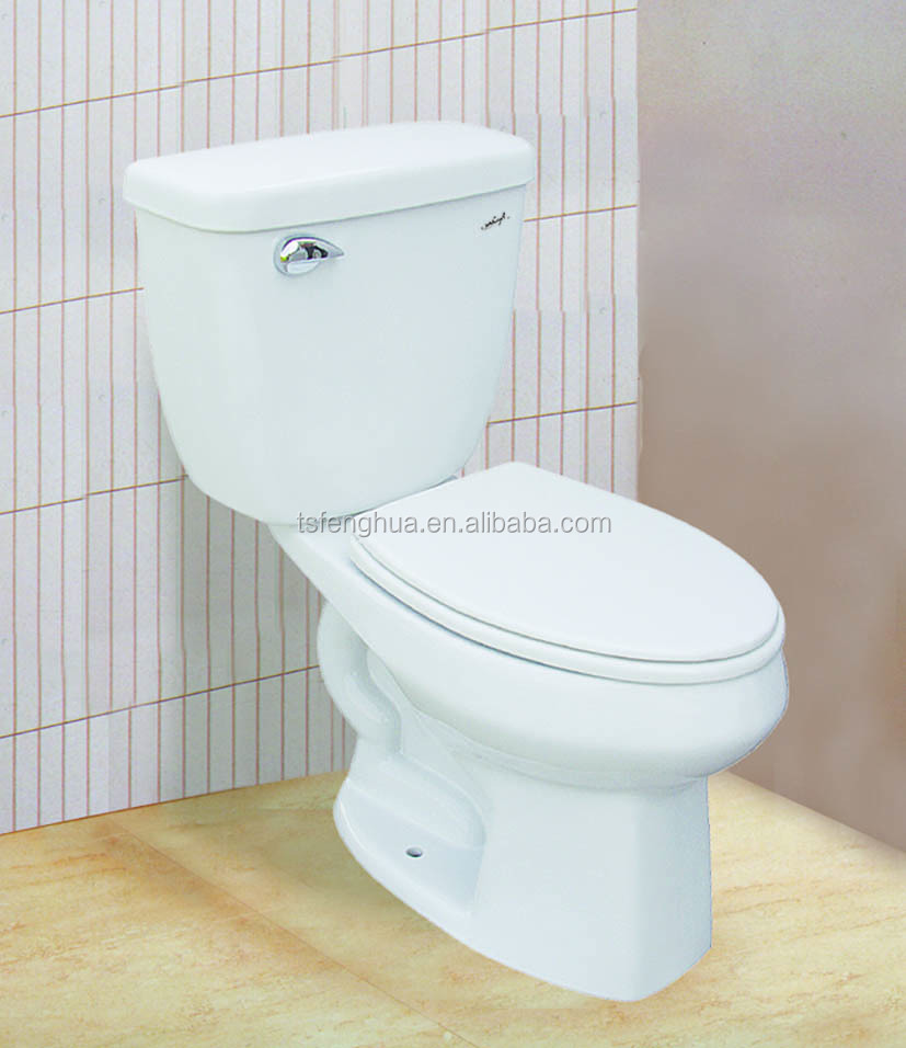 FH 309 Sanitaryware Ceramic Two Piece Toilet
