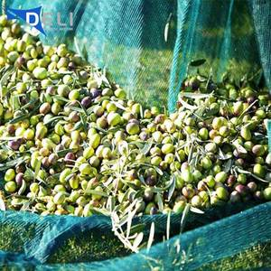 Agriculture design cheap price olive tree harvest net