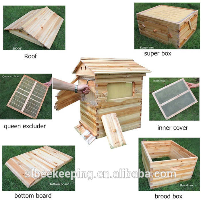 Beekeeping Equipment Directly Supply Bee Box Honey Auto Beehive Factory System Hive 8 Pcs Plastic Flow Frame