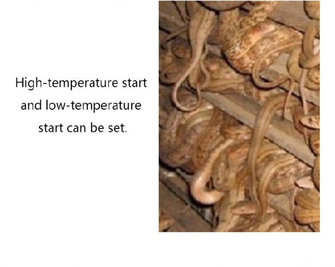 10 v 12 v 24 v 110 v 220 v Aquarium l'agriculture D'élevage incubateur thermostat d'incubateur D'oeufs