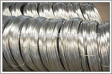 Electro and Hot dipped galanized iron Wire all Gauge