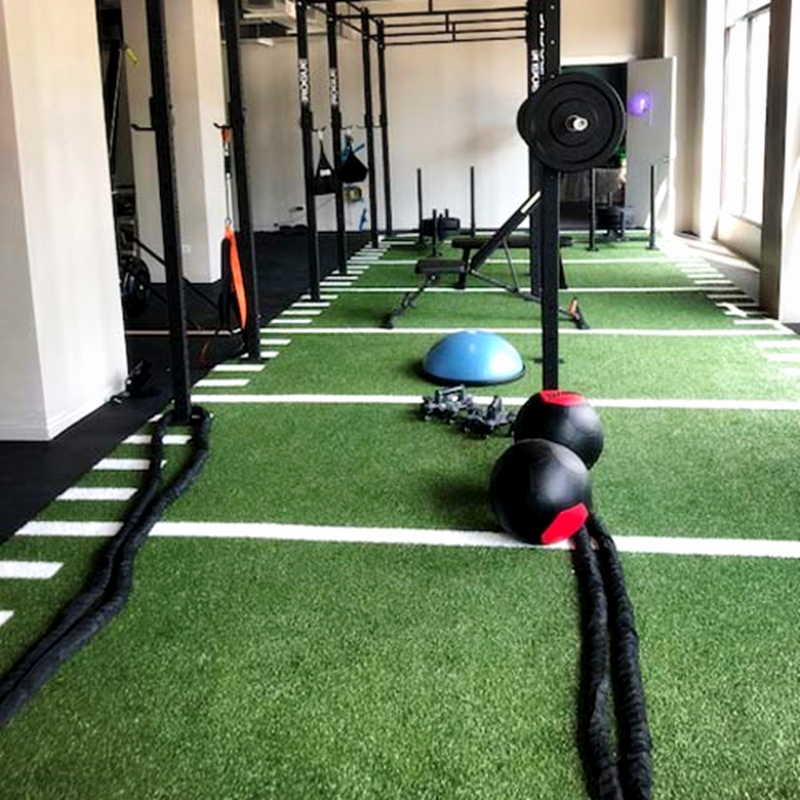 Ubin Gym Sled Turf Gym