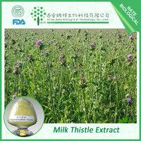 Health medical Milk Thistle Extract 50% Silymarin powder