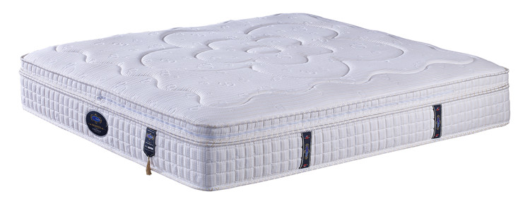 compressed home use nice dream roll up foam sponge mattress for children bed