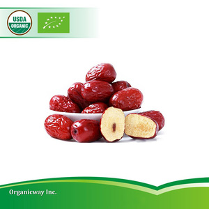 Health food chinese organic red dates