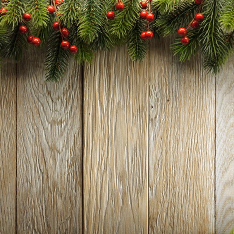 Fashion Christmas Photography Backdrops Vinyl Wooden Floor ...