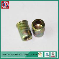Economic China Oem Factory Zinc Plated Rivet Nut