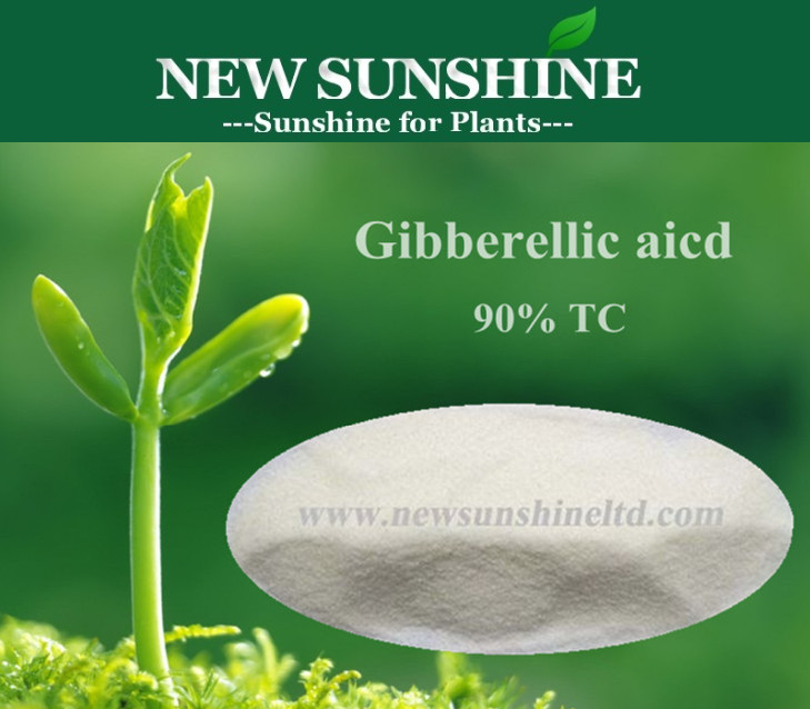 GA3, Gibberellin, gibberellic acid, plant growth regulator, agrochemical