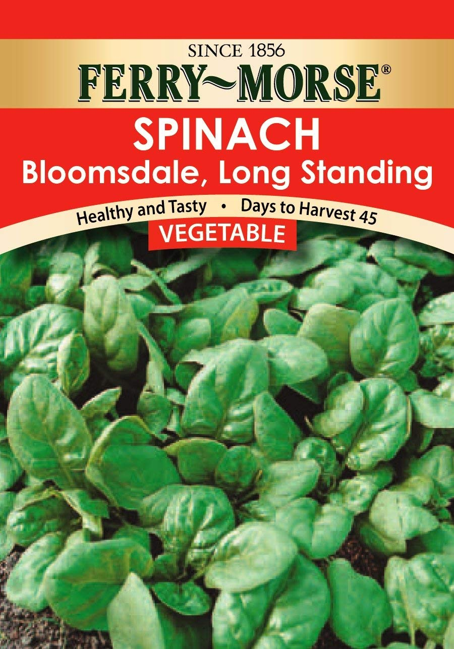 Get Quotations Ferry Morse Bloomsdale Spinach Seeds