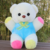 Free Sample Wholesale Colorful Teddy Bear For Baby Gift