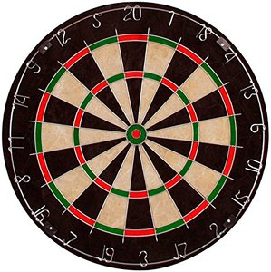 Custom Bristle Dartboard