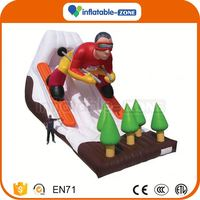 Super quality offer inflatable slides giant inflatable slide/dry slide for adults and children