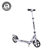 2 Wheel folding electric scooter for adult