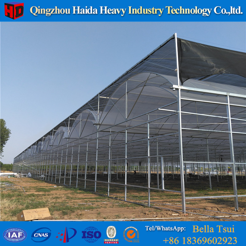 European Quality Plastic Agricultural Light Deprivation Greenhouse