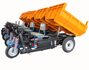 hydraulic electric tricycle for cargo/China low price adult electric trike