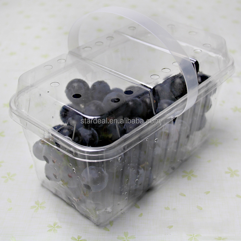 Blister large packaging PET container for fruit and vegetable packing