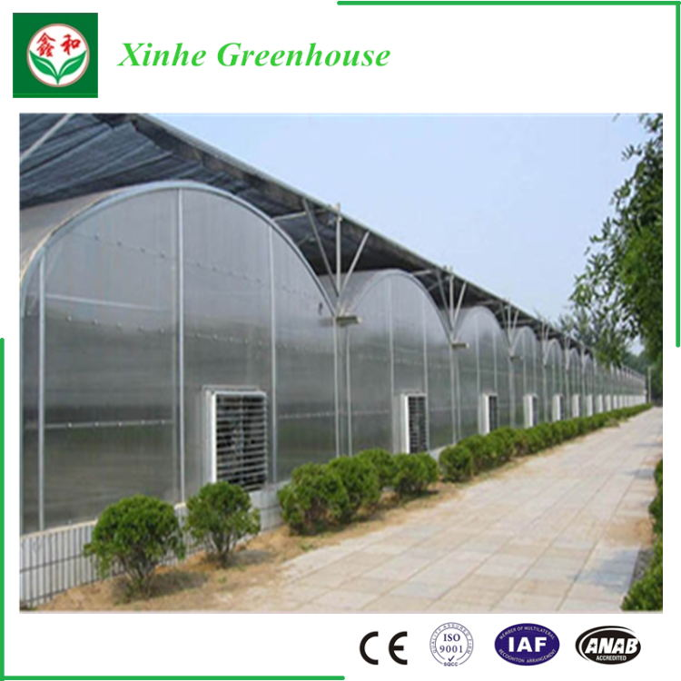 200 micro plastic film tunnel greenhouse usedused greenhouse frames for sale green house