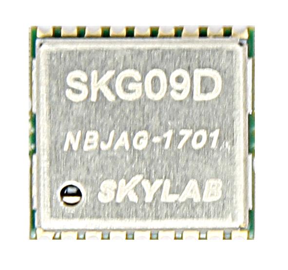 SKG09D005.png