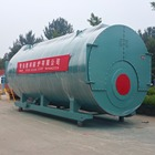 WNS 10t/h long term after-sales service and technical support gas oil fired industrial steam boiler