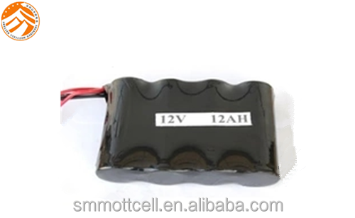 EV electric bike battery lifepo4 42120 12v 12ah battery packs with factory price and cheap offer