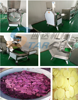 Most Popular Home Use Potato Chips Machine with Cheap Price