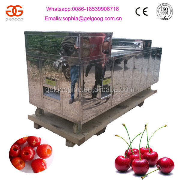 Industrial Electric Cherry Pitting Machine Cherry Pitter