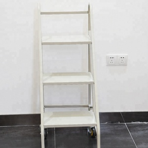 Steel Mobile Bookcase With Ladder