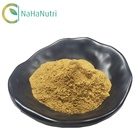 Supply High quality guggul extract powder