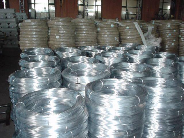 Hot Sale 1.2mm ZInc Coated Galvanized Steel Wire For Mesh