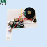 Good Voice Recording Chip for Mobile Toys, Kids Toy