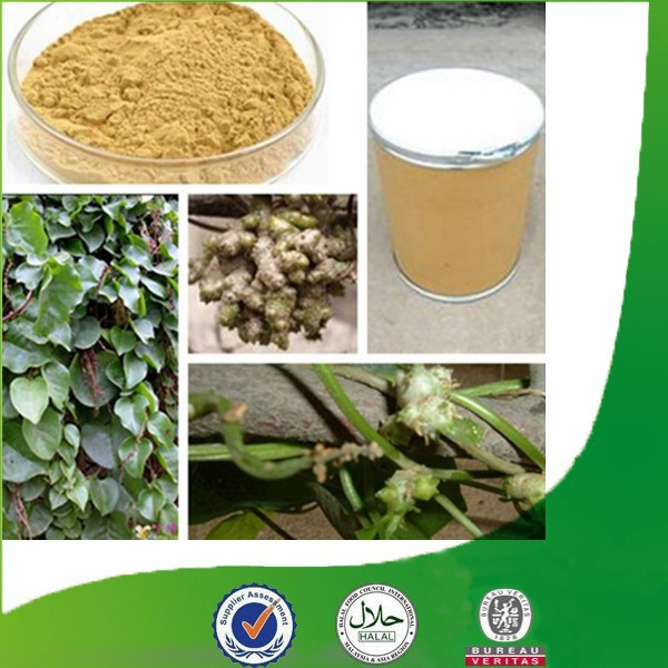 Factory supply Natural & Pure competitive-price Radix Notoginseng P.E, Sanchi Extract, 10% Notoginsenosides