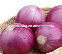 cheap yellow and red onion for sale, China(3-5cm,5-7cm,7-9cm,8-11cm)
