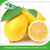 Fresh Eureka lemon from china