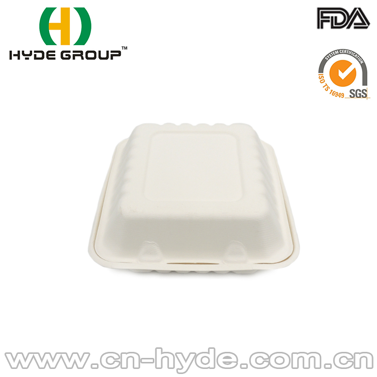 bagasse container/biodegradable fast food packaging box